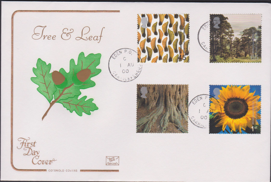 2000 Tree & Leaf COTSWOLD CDS First Day Cover - Eden P O Carrickfergus Postmark