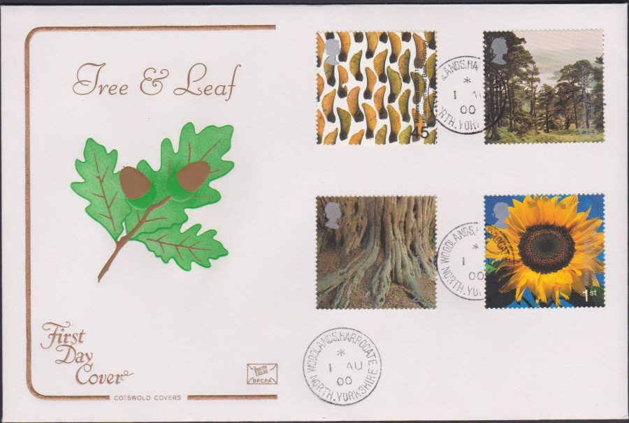 2000 Tree & Leaf COTSWOLD CDS First Day Cover - Woodlands, Harrogate Postmark